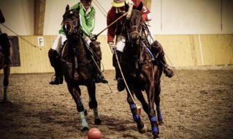 Turniej polo w Stacji Chojnów